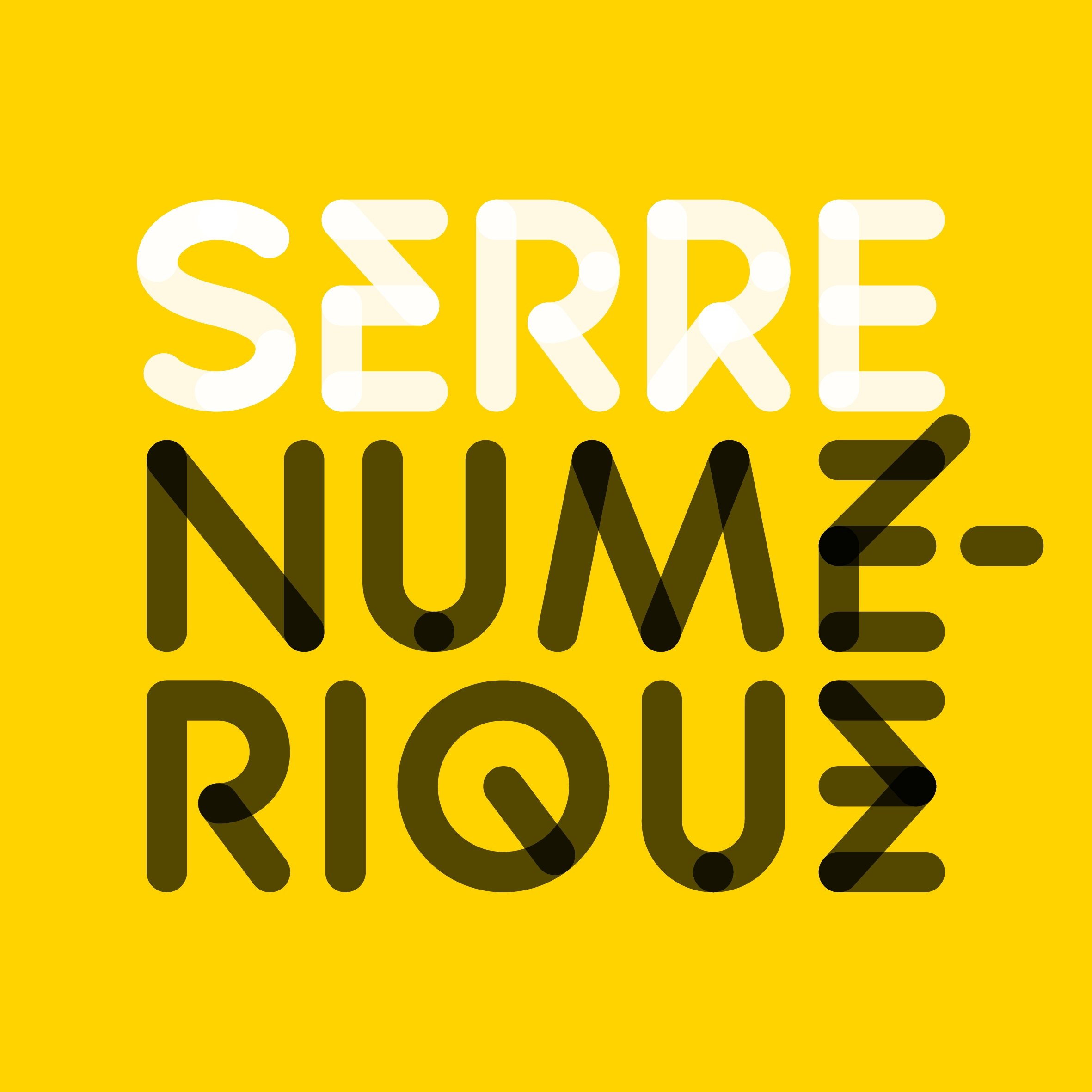 SERRENUMERIQUE LOGO